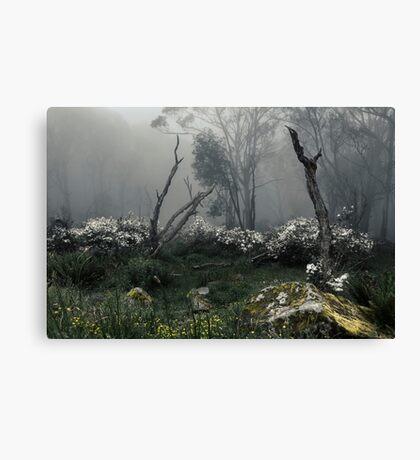 Fogscape Canvas Print