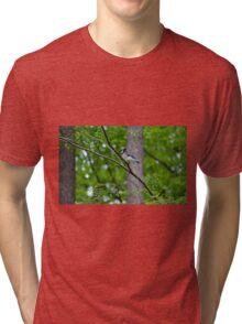 Blue Jay Tri-blend T-Shirt