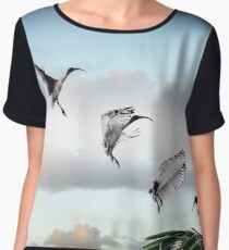 make way! (ibis landing sequence) Chiffon Top