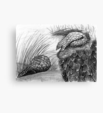 Pangolins with Scales Canvas Print