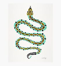 Turquoise Serpent Photographic Print