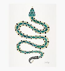Emerald & Gold Serpent Photographic Print