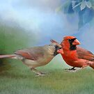 Northern Cardinal Mates in Spring by Bonnie T.  Barry