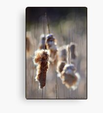 Marching Soldiers Canvas Print