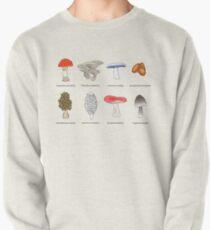 Mushroom Mania Pullover