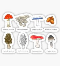 Mushroom Mania Sticker