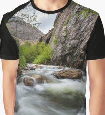 Little Cotton Wood River with Cliff Graphic T-Shirt
