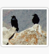 Two Ravens at the Grand Canyon Sticker