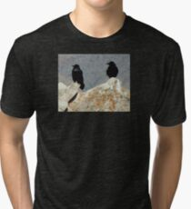 Two Ravens at the Grand Canyon Tri-blend T-Shirt
