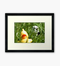 Quietly does it... Framed Print