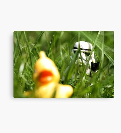 Quietly does it... Canvas Print