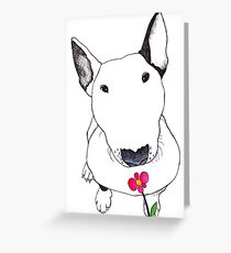 Bull Terrier Smelling Flowers  Greeting Card