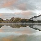 Upon Reflection - Queenstown New Zealand by Beth  Wode