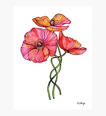 Peach & Pink Poppy Tangle Photographic Print