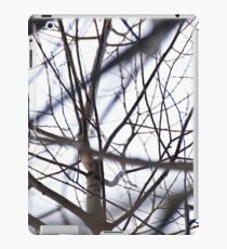 the tracery of offshoots of a tree iPad Case/Skin