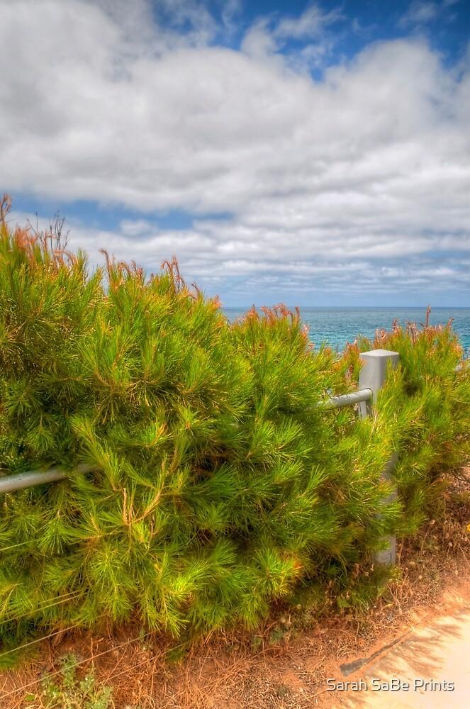 Ocean Views - hidden fence by Sarah SaBe Prints