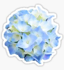 The Peaceful Hydrangea Sticker
