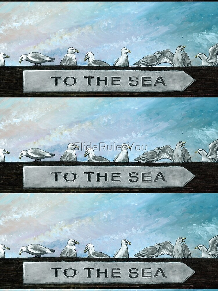 Ten Gulls by SlideRulesYou