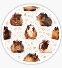 The Essential Guinea Pig Sticker
