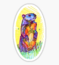 Groundhog drawing - 2011 Sticker