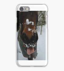 Cheeky Horse in Snow iPhone Case/Skin
