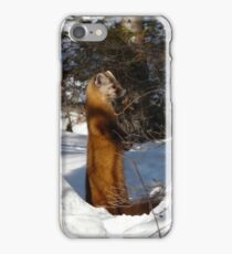 Marten ..I See You Sneaking Up ... iPhone Case/Skin
