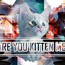 Are You Kitten Me? by Chris Brett