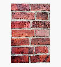 Brickwork Photographic Print