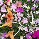 «Jardín de flores de hadas y hongos» de KellyMcV