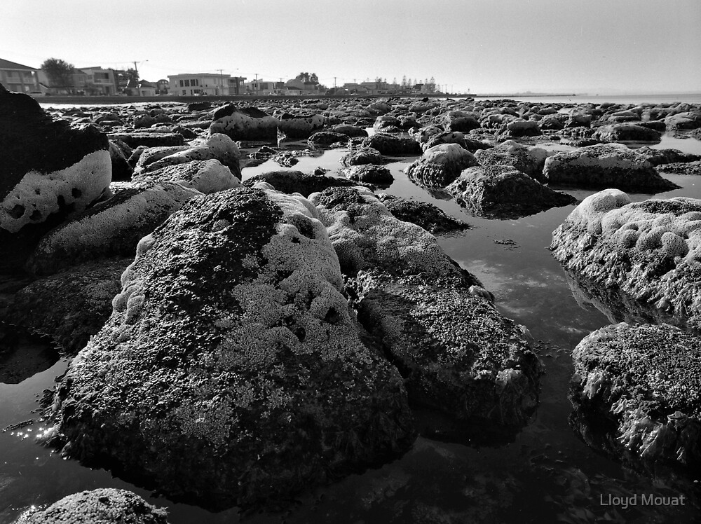 Rocky Foreshore by Lloyd Mouat