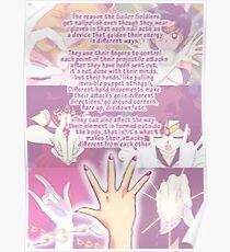"Sailor Moon logics ""size edit"" Poster"