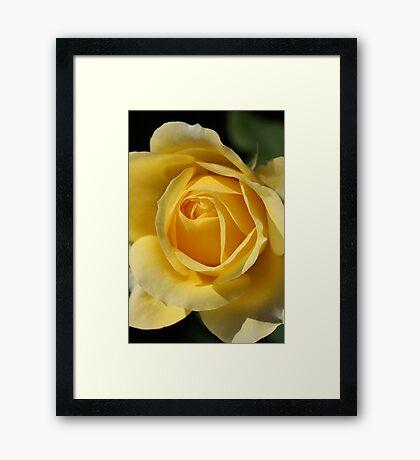 Look into it's Beauty Framed Print