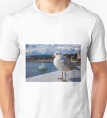 Modern Seagul T-Shirt