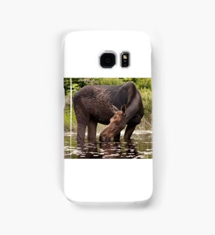 My dinner with a moose - Algonquin Park Samsung Galaxy Case/Skin