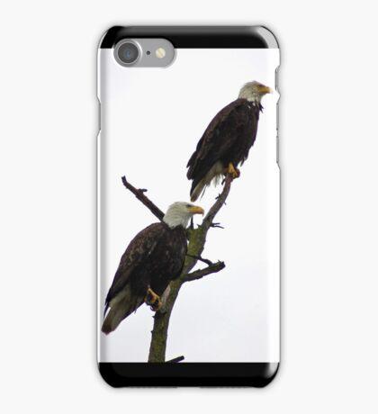 bald eagle pair in the rain iPhone Case/Skin