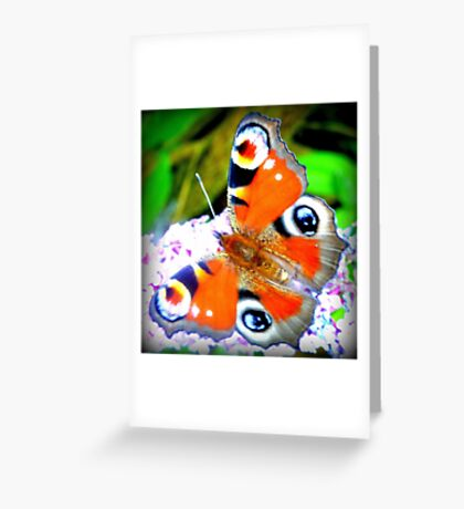 Peacock butterfly on Buddleia Greeting Card