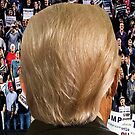 Trump: Back in the USA 1 by EyeMagined