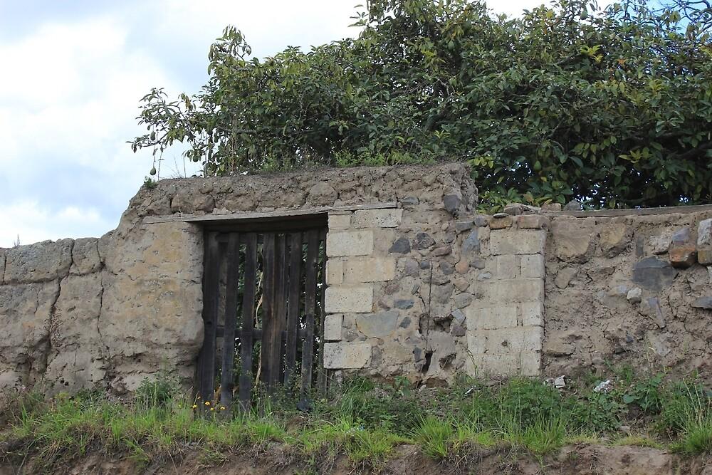 Wood Gate on a Hill by rhamm