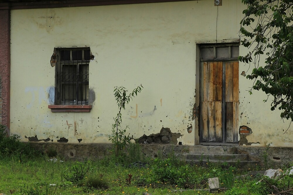 Window and Door in a Building by rhamm