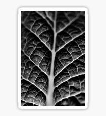 Leaf veins and texture Sticker
