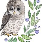 A cute owl with blueberries by BeeHappyShop