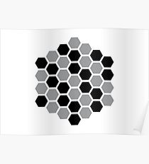 optics: hexagon, honeycomb Poster