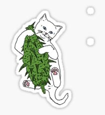 Cat Wrapped Around Weed Bud Sticker