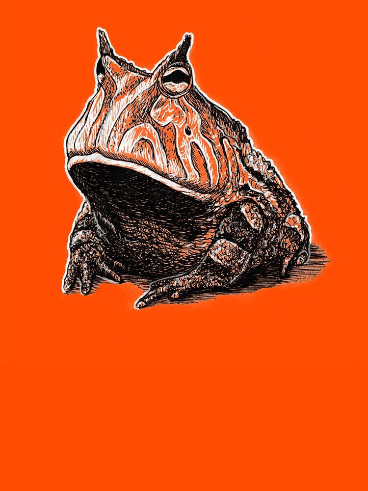 Orange Frog by buggybear