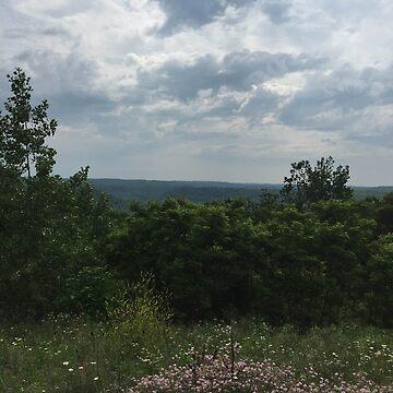 Ohio by ladychalk