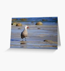 A Bad Company Seagull Greeting Card