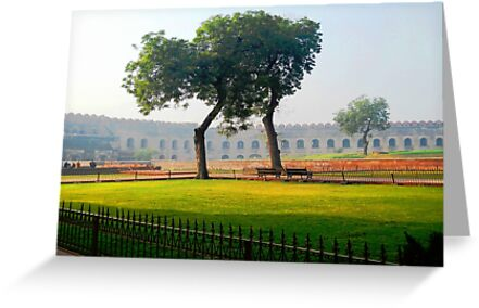 Trees at Agra Red Fort by Ethna Gillespie