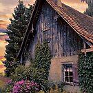 Austrian home by Maria Dryfhout