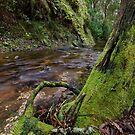 Nolans Creek by David  Hibberd