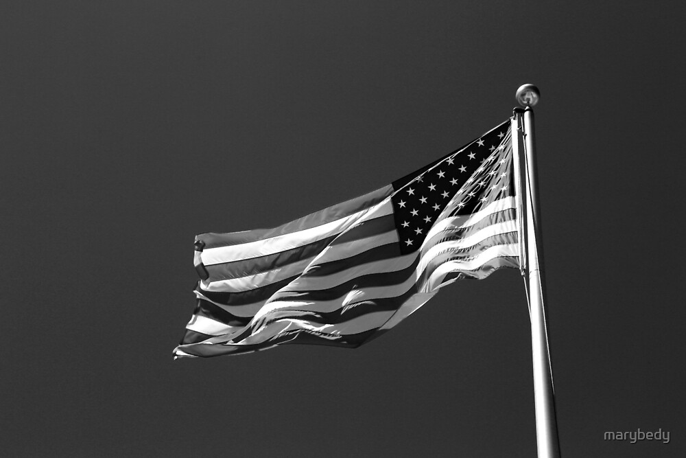 Stars and Stripes 10 BW by marybedy